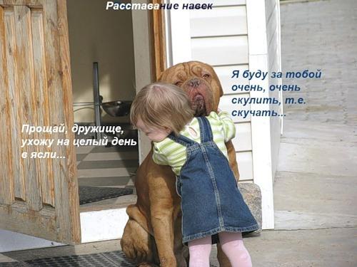 ЗАЧЕМ ЧЕЛОВЕКУ НУЖНА СОБАКА. Собака экстросенс