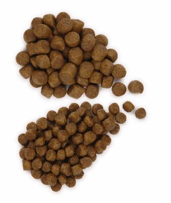 сухой корм для собак гранулы