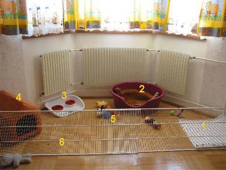 вольер для щенка, место для щенка, что подготовить к приезду щенка, что нужно для щенка